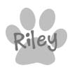 riley-siggy.jpg